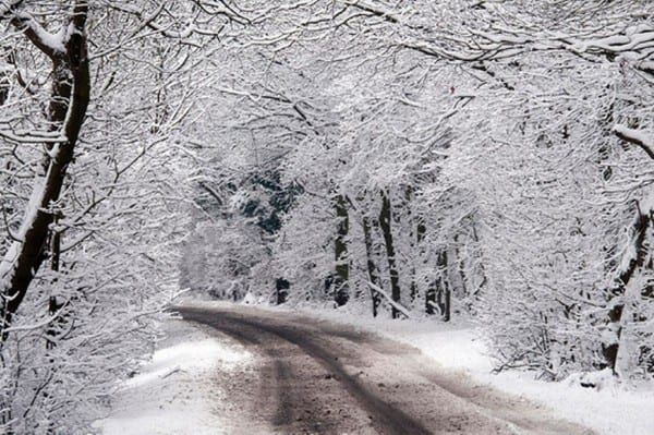 Snow around Billericay-676029