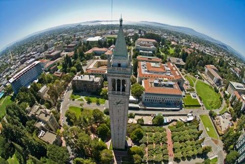 Harvard and Berkeley Round Robin Fields